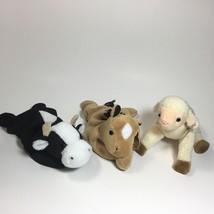 TY Beanie Baby - Daisy , Derby, Ewey Stuffed Animals Plush Toy 3 For $12 - $11.88