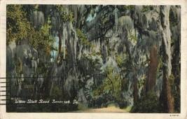 Circa 1937 White Bluff Road, Savannah, Ga. Postcard - $4.65