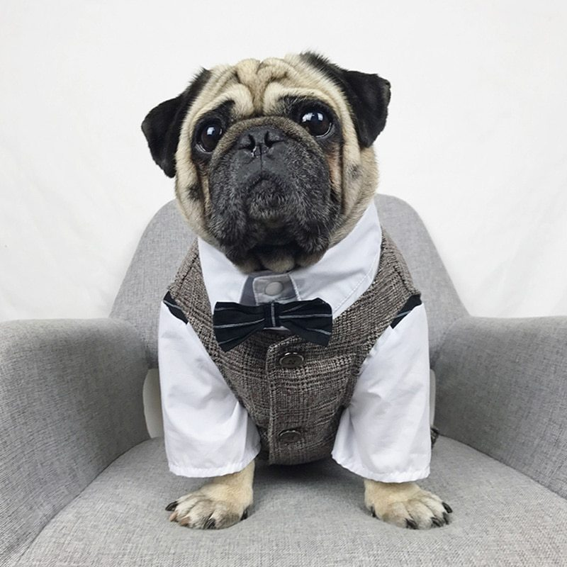 Formal Dog Clothes Wedding Pet Dog Suit Pets Dogs Clothing For Dogs Pets Supplie