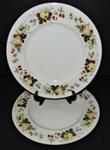 "2 Royal Doulton Miramont Dinner Plates China 10 5/8"" TC1022 Fruit Pattern - $32.66"