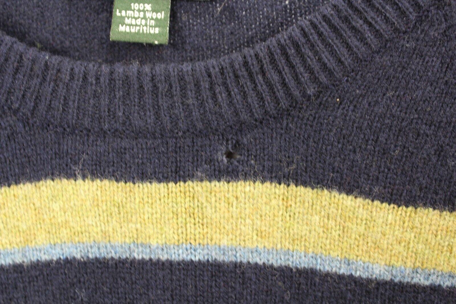 J Crew Mens Medium Lambswool Striped Casual Fall Crewneck Sweater Blue Green