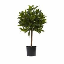 Multicolor 2' Sweet Bay Mini Ball Topiary - 2 Ft. - $66.38