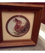 Kay Lamb Shannon Bunny Rabbit in Grass Meadow framed Print - $10.00