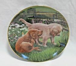 "Danbury Mint Golden Retriever Dog Garden Visitor Collector Plate - 8"" - $17.99"