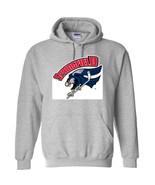 00509 hockey american league springfield falcons hoodie ash thumbtall