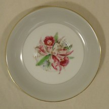 Noritake 5049 Vintage Tea Cup Saucer 5 1/2in x 5 1/2in x 1in China Gold Rim - $11.64