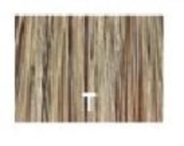 Redken Double Fusion Blondes Color - T - 2 oz - $9.99