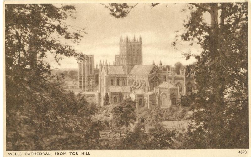 United Kingdom, Wells Cathedral from Tor Hill, early 1900s unused Postcard