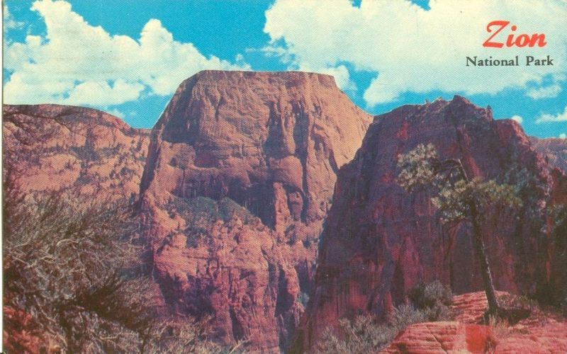 Zion National Park, Utah 1969 used Postcard