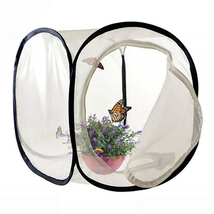 FOME Insect and Butterfly Habitat, Foldable Light-transmitting Butterfly... - $10.91