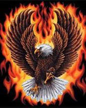 FLaming EagLe Cross Stitch Pattern***LOOK*** - $4.95