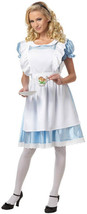 Alice in Wonderland Costume - Adult - $34.99