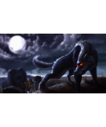 Haunted : Attunement of Werewolf Energy, Connection and Synergy - Inner ... - $120.00