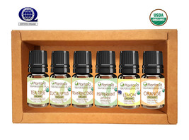 Organic Essential Oil Set, 6 x 5 ML Tea Tree Eucalyptus Lemon Orange Pla... - €25,26 EUR