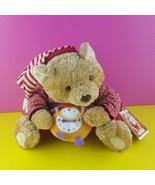 "Hallmark Storybook Friends Plush Crayola Bedtime Benson Bear 10"" Stuffed... - $20.78"