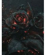 Ember Rose Mystery Subscription Box Pagan bring beauty & sweetness to yo... - $49.00