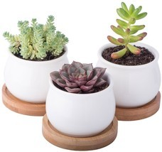 Mini Ceramic Planter Pots Set 3-Packs Indoor Outdoor Garden Flower Cactu... - $21.18