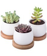 Mini Ceramic Planter Pots Set 3-Packs Indoor Outdoor Garden Flower Cactu... - $32.10 CAD