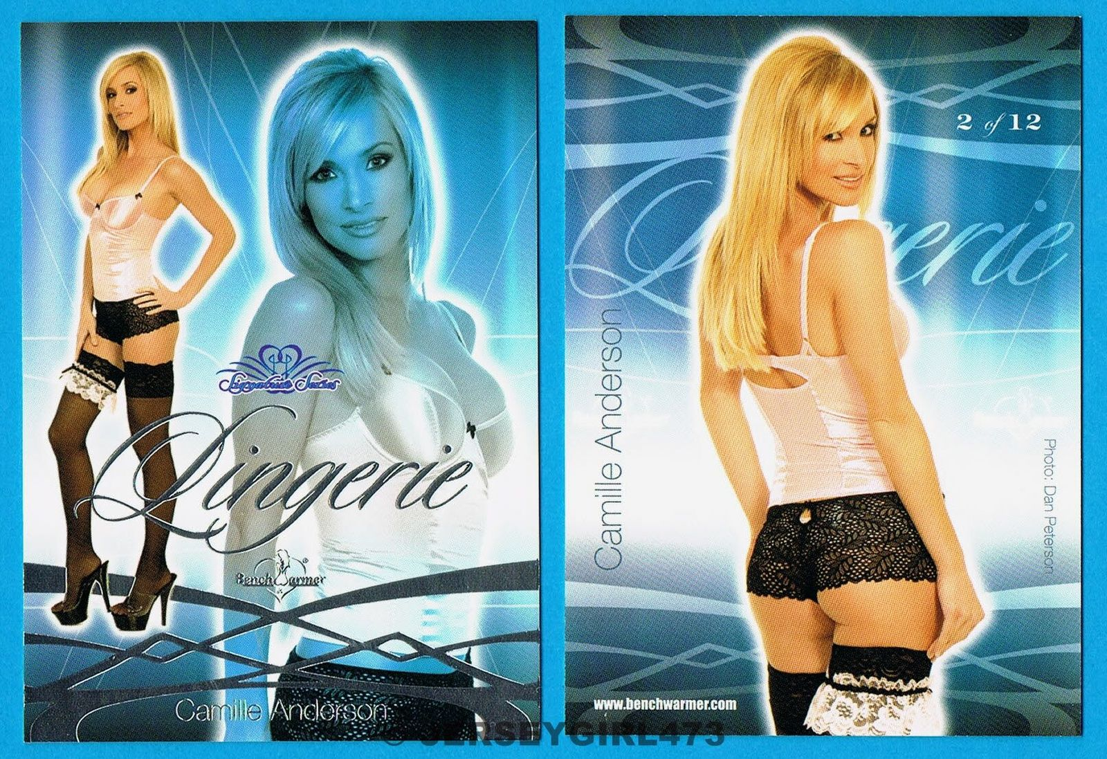 Camille Anderson 2008 Bench Warmer Signature Series Lingerie Card #2