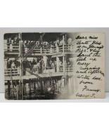 Atlantic City NJ,  A Net Haul c1906 Postcard C22 - $4.95