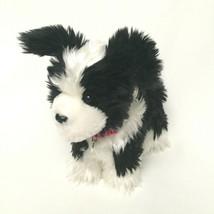 American Girl Saige's Dog Rembrandt Border Collie Plush 2013 Silver Tag ... - $49.49