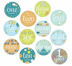 Infant Monthly Milestone Stickers Photo Op First Year Boys - $11.29