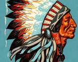 American indian chief cross stitch pattern thumb155 crop