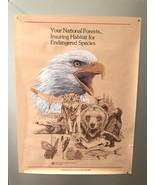 """Vintage NATIONAL FORESTS BALD EAGLE 1982 Color Illustrated Poster 18"""" x 24"""" - $18.56"""