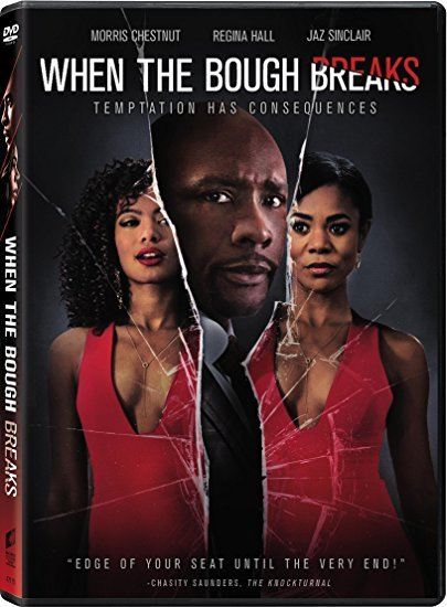When the Bough Breaks [DVD, 2016]