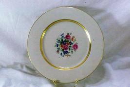 "Theodore Haviland Gainsborough Large Dinner Plate 10 3/4"" Rare Size - $8.31"