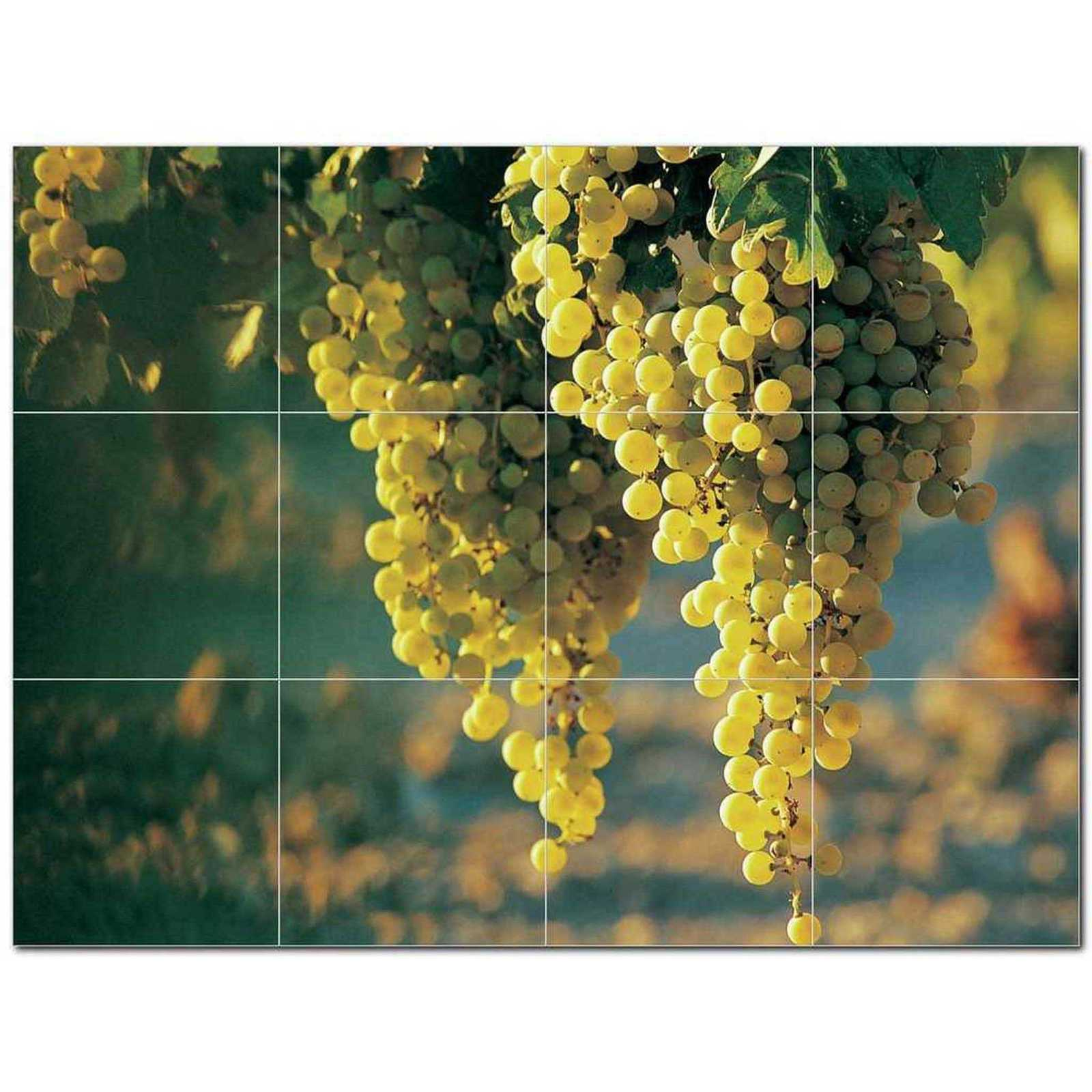 Primary image for Wine Grapes Ceramic Tile Mural Kitchen Backsplash Bathroom Shower BAZ406368