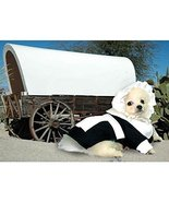 Puppe Love Dog Costume Pilgrim Girl Costumes Dress Your Dogs for Thanksg... - $39.66
