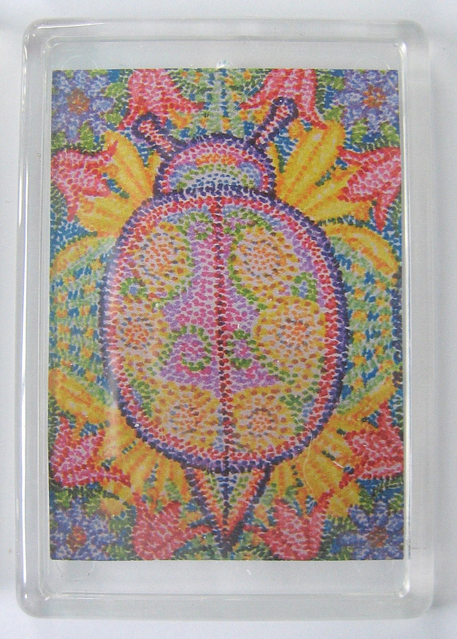 Psychedelic lady bug magnet