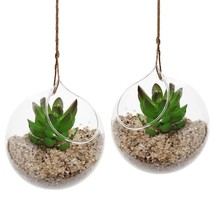 Set of 2 Hanging Air Plant Elegant Home Office Decorative Clear Glass Te... - $23.08
