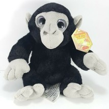 "Beverly Hills Teddy Bear Co Monkey Plush Stuffed Chimp 7"" Safari Friends... - $15.14"