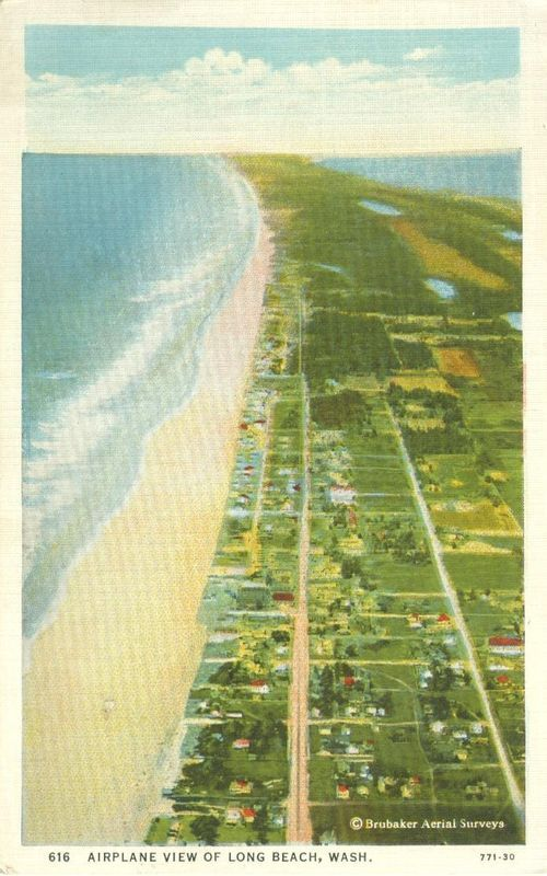 Airplane view of Long Beach, Wash, unused Postcard