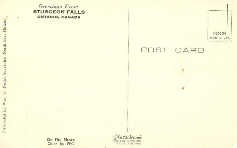 Greetings from Sturgeon Falls, Ontario, Canada unused Postcard