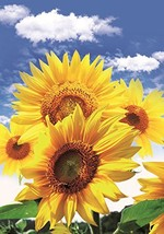 Sunflower Garden Flag Colorful Spring Summer Blooms Double Sided 12.5'' ... - $7.34