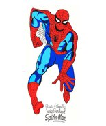 "Spiderman 24 x 56 ""Friendly Neighborhood Spiderman"" Door Poster Reproduc... - $55.00"