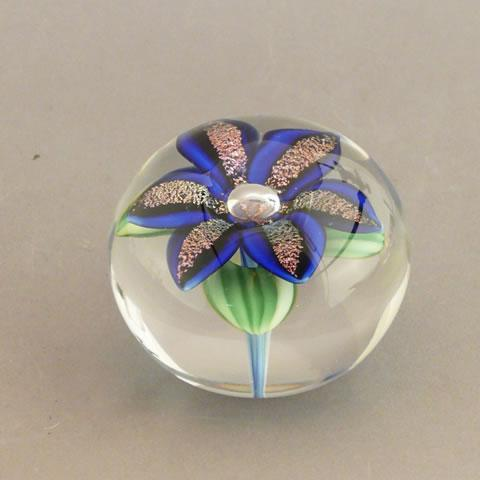Orientandflume paperweight dichroic lily blue