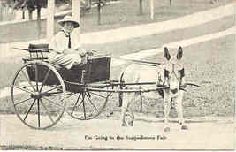 An Ass Cart Vintage 1908 Post Card - $6.00