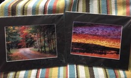 Renner Images New Mexico Geese  & Vermont Photograph By Paul Tenner - $15.00