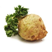 100 Pcs Root Celery seeds Vegetable seed Spherical Root Parsley seeds - $4.82