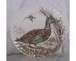 British_anchor_wild_birds_of_heath_moorland_mallard_whole_thumb155_crop