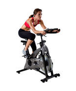 HealthRider H40x Pro Indoor Cycle,Exercise Bike,Fitness Bike, Weight Los... - $639.99