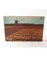 Vintage 70s Fairchild Europa Tulip Time Holland 1200 Piece Puzzle 25 x 2... - $29.69