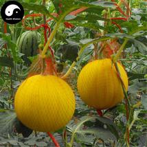 Buy Watermelon Fruit Seeds 100pcs Plant Citrullus Lanatus Yellow Skin Wa... - $15.99