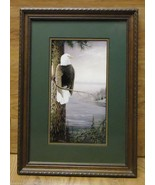 Saunders Framed Art Bald Eagle 11in x 15 1/2in Wood Glass Paper - $54.28