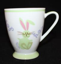 Starbucks Coffee Easter Bunny Rabbit Hop Childr... - $24.91
