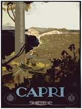 Decoration Poster.Capri,Italy travel shop decor. Wall art room design.11415 - $10.89+